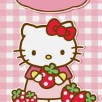 キティちゃんとイチゴ