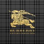 バーバリー/ゴールドロゴ&ブラックチェック