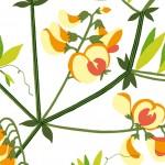 マリメッコ/花柄5
