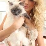 テイラー・スウィフト/Taylor Swift11