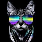 DJ N.e.k.O