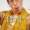 ピコ太郎/ペンパイナッポーアッポーペン PPAP