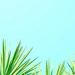 [おしゃれカラーシリーズ]ツリー