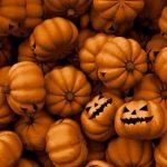 ハロウィン☆かぼちゃがいっぱい