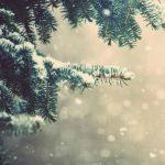 [クリスマス]ホワイトクリスマスツリー