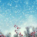 [クリスマス]きれいなクリスマスツリー&雪