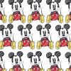 ミッキーマウス/Mickey Mouse[04]無料高画質iPhone壁紙