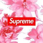 Supreme/シュープリーム[45]無料高画質iPhone壁紙
