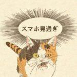 かわいい猫2