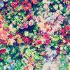 おしゃれ✨️かわいい💓花柄[02]無料高画質iPhone壁紙