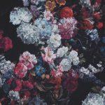 落ち着いた花柄🌺