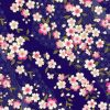 季節を感じる桜🌸の無料高画質iPhone壁紙[09]